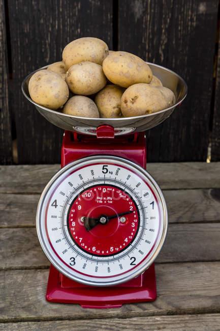 patate_bilancia